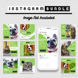 اینستاگرام زیبا و جذاب Pet shop instagram post template