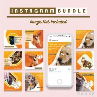 قالب اینستاگرام فوق العاده Pet shop social media square promotional template