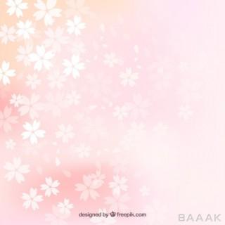 پس زمینه خاص و مدرن Blurred cherry blossoms background