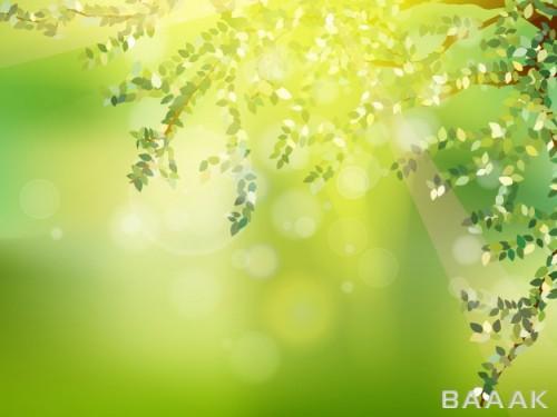 تصویر پس زمینه وکتوری زیبا و آفتابی