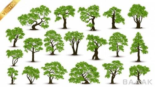 کالکشن پس زمینه های زیبا از درختان سرسبز