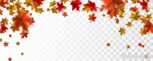 پس زمینه برگ های پاییزی