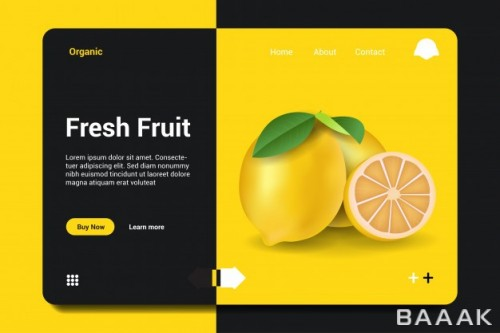 صفحه فرود زیبا Fresh fruit landing page background