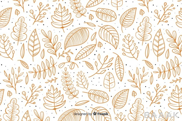 پس-زمینه-جذاب-و-مدرن-Hand-drawn-autumn-background-with-leaves_550451271