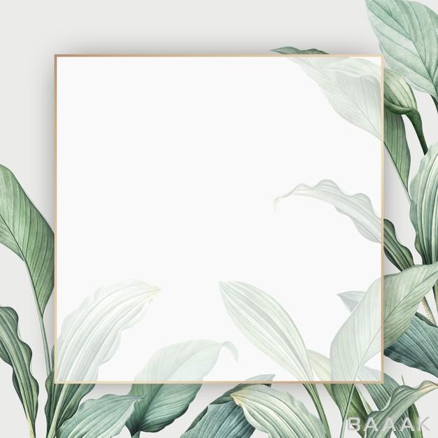 قاب-زیبا-و-جذاب-Tropical-paradise-card_711150028