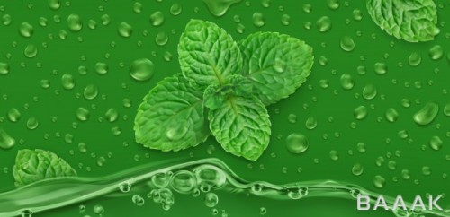 پس زمینه سبز رنگ به همراه نعنا و قطرات آب