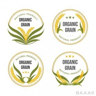 ست نشان های زیبا از محصولات ارگانیک