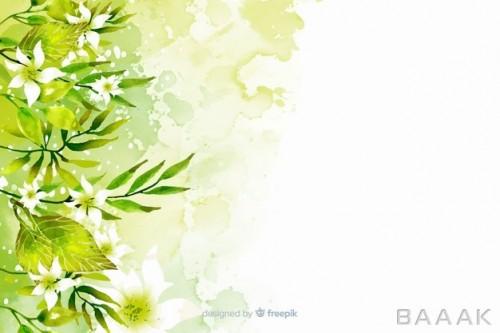 پس زمینه طرح گیاهان زیبا و سبز
