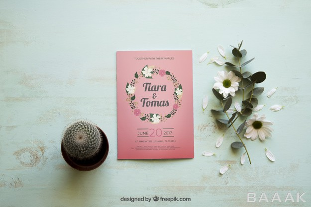 موکاپ-مجله-به-همراه-گل-کاکتوس_625558030
