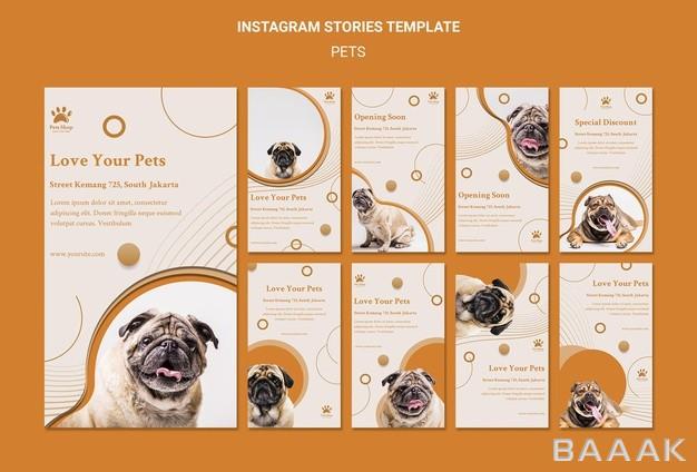 پک-استوری-اینستاگرام-با-موضوع-سگ-مناسب-فروشگاه-حیوانات-خانگی_407117253