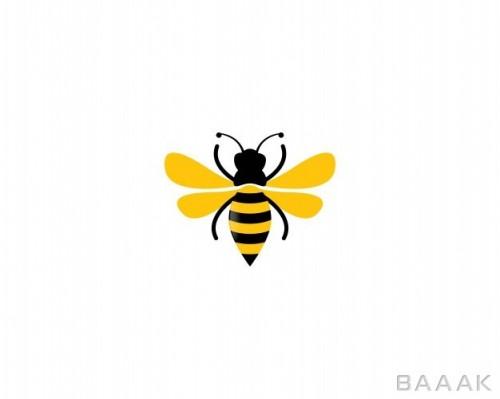 لوگو طرح زنبور